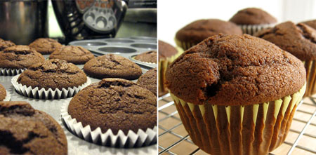 gingerbread cupcakes unfrosted